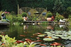 fish pond liner, fish pond