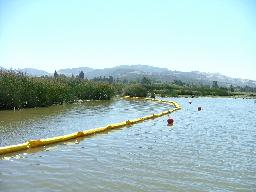 Silt Curtain, Floating Silt Curtain, Silt Barrier, Silt Protector