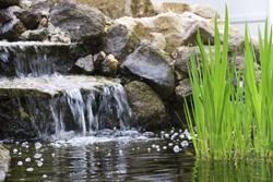 water garden pond liner, water garden pond